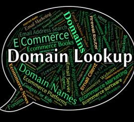 What Should You Do if Your Favorite Domain is Taken?